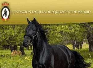 Escuela Equitacion Madrid